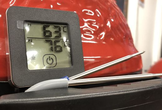 Mustang digital thermometer (contain 2 sensors)